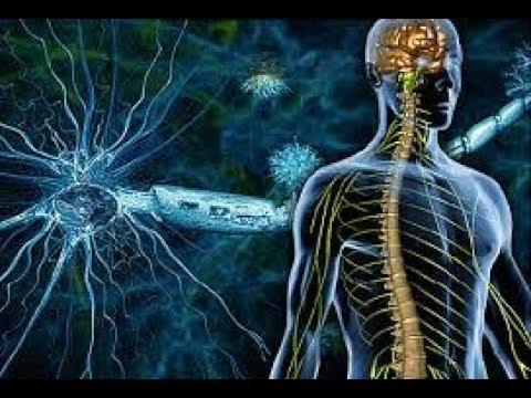 Behandlung von Gallen Hypertonie