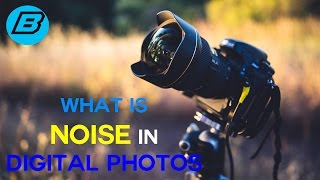 What is Noise In Digital Photography? And How to Reduce Noise In Photos!