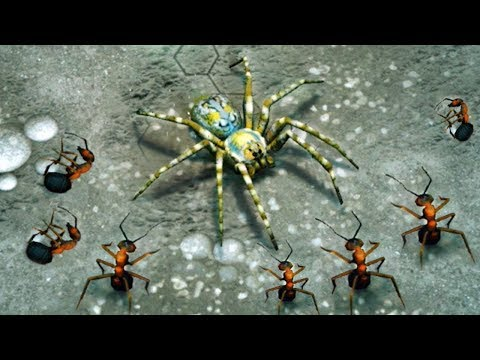 empires of the undergrowth gameplay