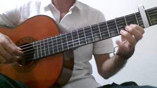 Hüsnü Arkan & Birsen Tezer - Hoşgeldin | Gitar Solo