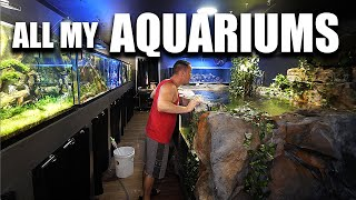 ALL MY AQUARIUMS - The king of DIY fish tanks tour