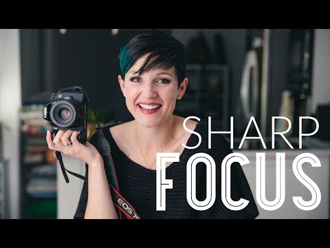 how to get super sharp food photography tips by the bite shot