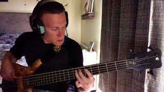 T & P Combo- 311- Bass Cover