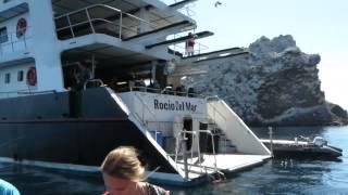 Sea Of Cortez Scuba Video September 2014