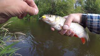 Рыбалка и сплав по реке чусовая из челябинска