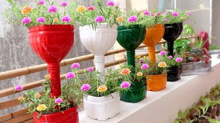 Recycle Plastic Bottles Into Colorful Flower Pots For Small Garden And Balcony