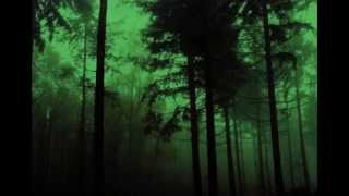 Draconian - The Everlasting Scar (lyrics)