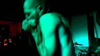 Video Memories - modrá vopice 2010
