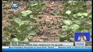 ECO journal: Soil fertility