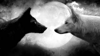 The Equilibrium Dilemma  | The Path Of The Lone Wolf