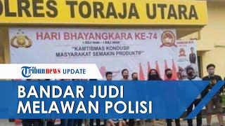Bandar Judi Sabung Ayam di Toraja yang Lawan Polisi dan Videonya Viral Tak Berkutik saat Ditangkap