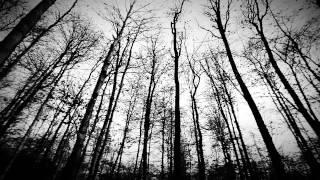 Tua: Raus (Official Video)