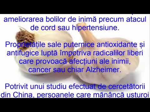 Infecții helmintice ppt