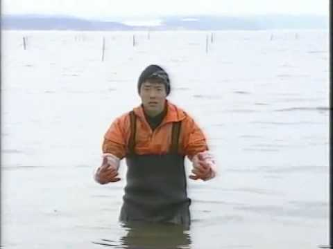 When you're about to give up on something, remember this Japanese fisherman