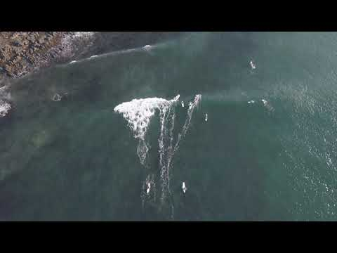 Drone footage of surfing at Arrawarra