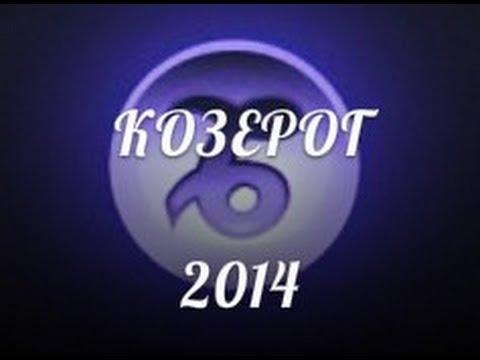 1995 чей год по гороскопу