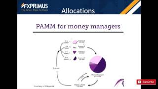 PAMM Masters Webinar - FXPRIMUS
