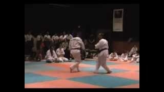 preview picture of video 'Démos TKD - Gala Palaiseau 2012'