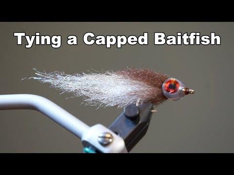 Capped Baitfish