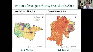 Accounting for the critically endangered Box-gum Grassy Woodlands