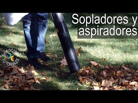 Sopladores y aspiradores para jardín (Bricocrack)