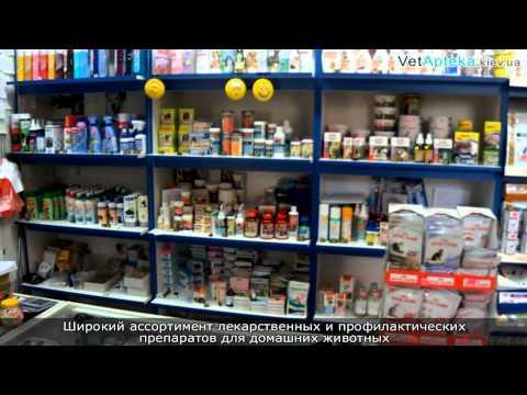 Возбуждающие препараты для мужчин и женщин купить