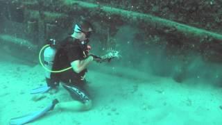 Saving Tangled Lobster -2014