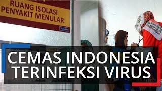 WHO & Ahli Harvard Heran Tak Ada Kasus Corona di Indonesia, Khawatir Jika Malah ada Virus ini