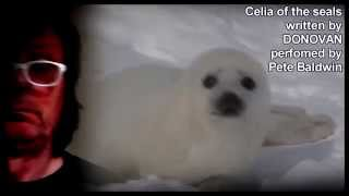 Celia of the seals.....