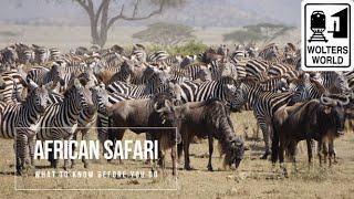 Safari Travel: What to Know Before You Go on an African Safari