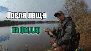 Сазан рыбалка на волге в кимрах
