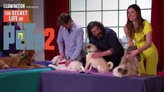 The Secret Life Of Pets 2   Pet Massage - Now on 4K, Blu-ray, DVD & Digital   Illumination