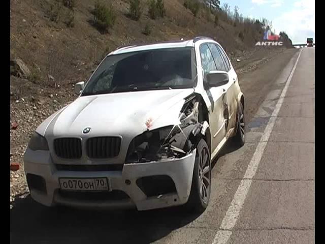 Под колесами машины погибла косуля