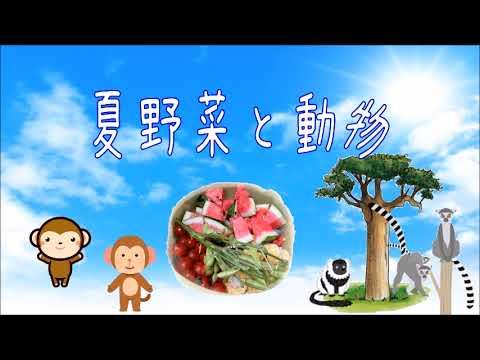 夏野菜と動物★到津の森公園