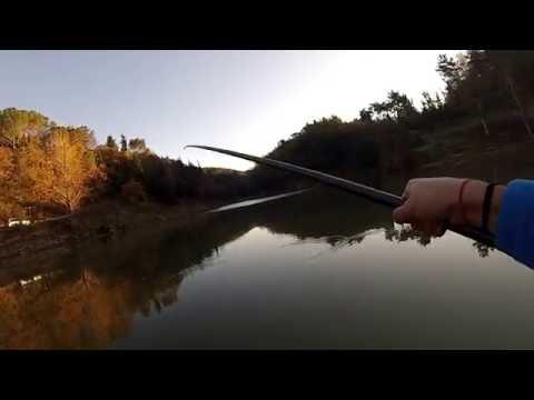 La pesca in caccia di video taiga