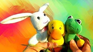 Мультик про дружбу. Утенок, зайчик и лягушонок.