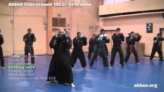 How to do Ninjutsu striking - sabaki basic combos - AKBAN Ninjutsu training