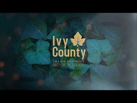 3D Tour of IVY County