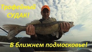 Рыбалка на озере сенеж 2019