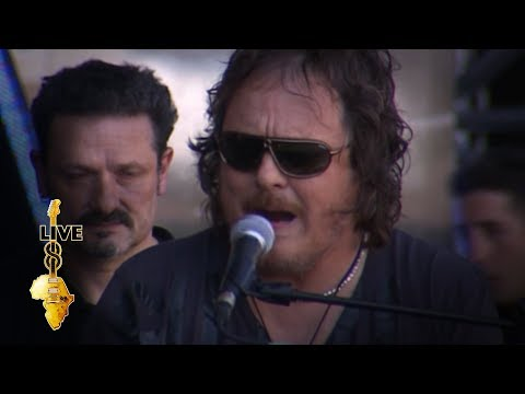 Zucchero - Everybody's Gotta Learn Sometime (Live 8 2005)