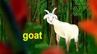 """gorilla giraffe goat - lower case alphabet """"g"""""""