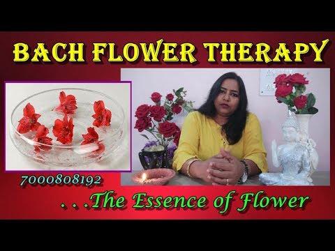 Bach Flower Remedies |Therapy | Learn Reiki, SwitchWord,ZIBU ...