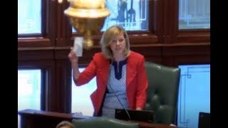Jeanne Ives Blasts the Illinois House over Tax Increases July 2 2017