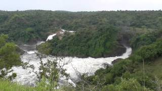 preview picture of video 'Murchison falls, Uganda'