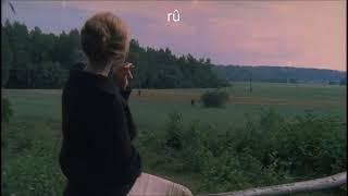 Bir Gün Bite Biliyor Büyük Aşklar
