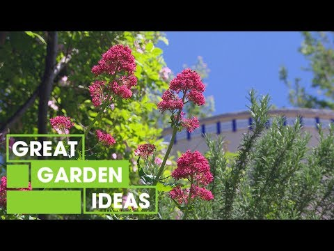 The Water Tank Home and Garden | Garden | Great Home Ideas