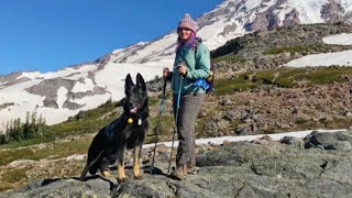 Dog Refuses to Leave Veteran's Side as She's Injured During Mountain Hike