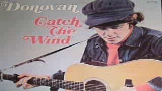 Donovan -  Catch The Wind ( Lyrics )