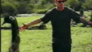 crusty demons soundtrack 2000 - Kênh video giải trí dành cho