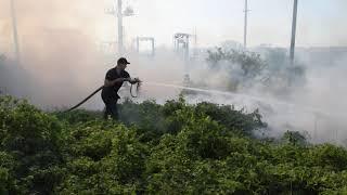 В Николаеве загорелось 3 га сухостоя, после того как проехал грузовой поезд. Видео